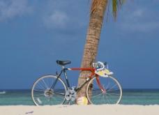 海边自行车图片