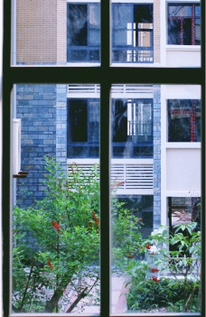 透过窗户看园林图片