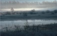 清晨景色图片