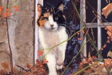 绘画猫图片