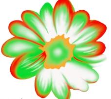 韩国花朵素材图片