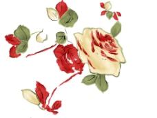 精美花卉素材图片