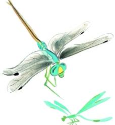 水墨风格的蜻蜓图片