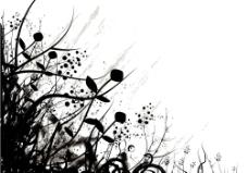 黑白时尚底纹图片