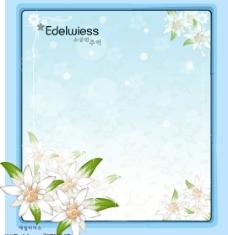 韩国花框图片